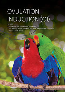 Ovulation Induction (OI)